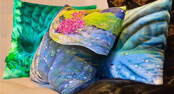 Paola Prints- Luxurious Local Pillows