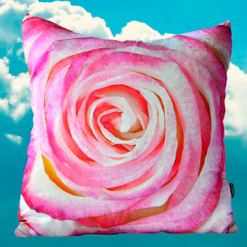 Paola Prints Perfect Rose