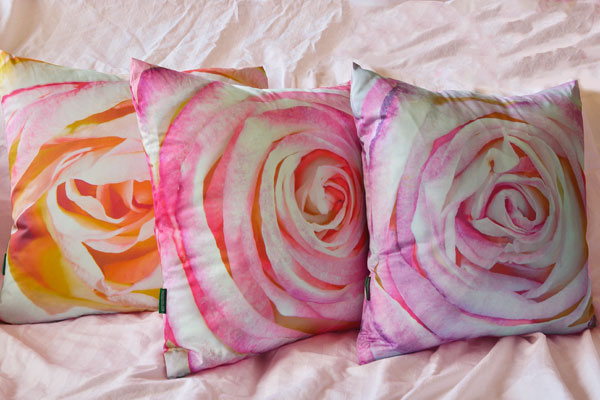 Paola Pillows Have Arrived
