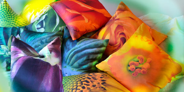 Plenty of Paola Prints Color