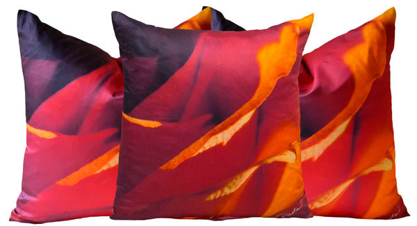 Paola Pillows Bring Luxury Home