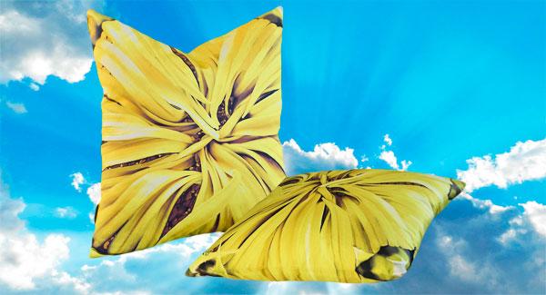 Raising Sunflowers