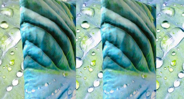 Paola Prints Green