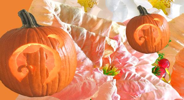 Orange You Glad It's Halloween?