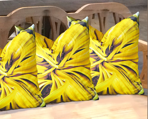 Sunflowers Warm